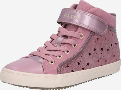 GEOX Sneaker in dunkelpink / bordeaux / pastellrot, Produktansicht