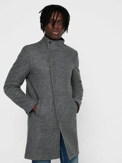 Only & Sons Manteau d'hiver en gris, Vue avec modèle