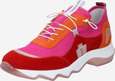 Donna Carolina Baskets basses en orange fluo / rose / rouge, Vue avec produit