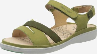 Ganter Sandalen in grün / hellgrün, Produktansicht