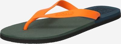 ECOALF Séparateur d'orteils en vert foncé / orange, Vue avec produit