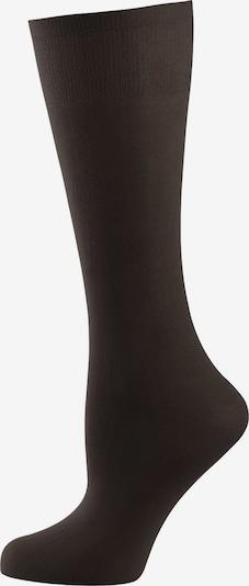 Nur Die Kniestrümpfe ' Cotton 60 DEN ' in schwarz, Produktansicht