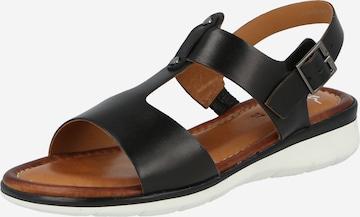 ARA Sandale  ' Kreta' in Schwarz