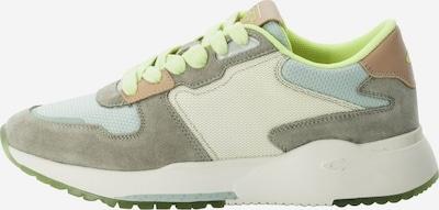 CAMEL ACTIVE Låg sneaker i beige / grön, Produktvy