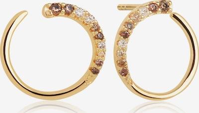 Sif Jakobs Earrings ' ' in Gold, Item view
