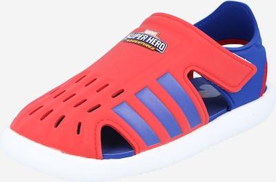 ADIDAS PERFORMANCE Buty na plażę/do kąpieli w kolorze królewski błękit / czerwonym, Podgląd produktu