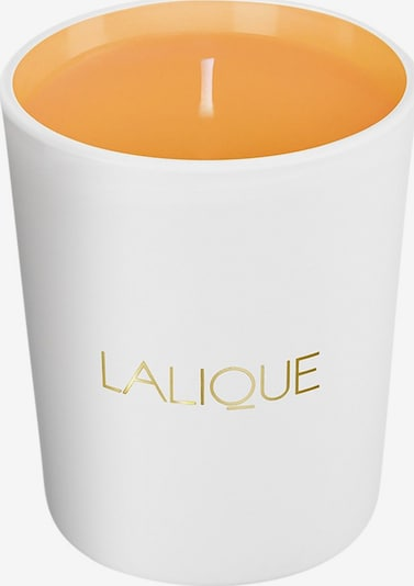 LALIQUE Kerze 'Sweet Amber' in gold / orange / weiß, Produktansicht