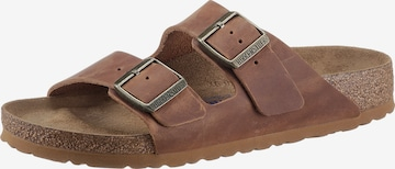 BIRKENSTOCK Pantolette 'Arizona' i brun