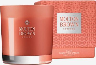 Molton Brown Kerze 'Gingerlily' in koralle, Produktansicht