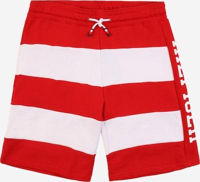 Pantaloni 'RUGBY' TOMMY HILFIGER pe roșu / alb: Privire frontală