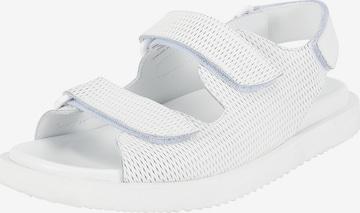 Ekonika Sandals in White