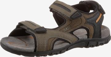 Sandales GEOX en marron