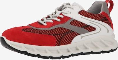 IGI&CO Sneaker in grau / rot / weiß, Produktansicht