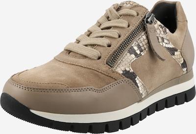 GABOR Sneaker in sand / weiß, Produktansicht
