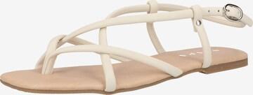 SCAPA Sandale in Beige