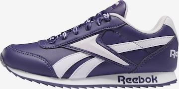 Reebok Classics Sneaker in Lila