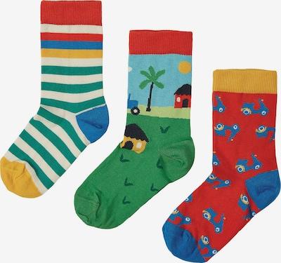 Frugi Socken in türkis / royalblau / grün / rot, Produktansicht