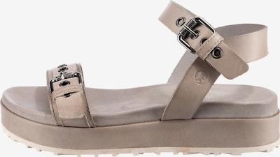 JOLANA & FENENA Sandale in greige, Produktansicht