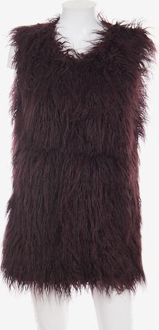 Noisy may Vest in S in Purple