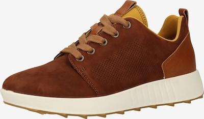 Legero Sneakers laag in de kleur Karamel / Kersrood, Productweergave