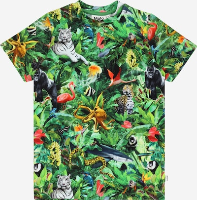 Molo Shirt 'Ralphie' in grün / mischfarben, Produktansicht