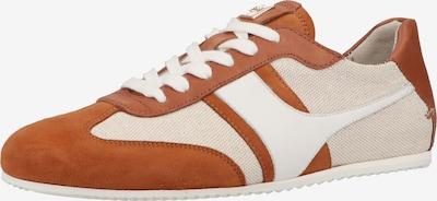 Högl Sneaker in beige / braun / weiß, Produktansicht