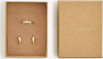Pilgrim Σετ κοσμημάτων 'Cana' σε χρυσό