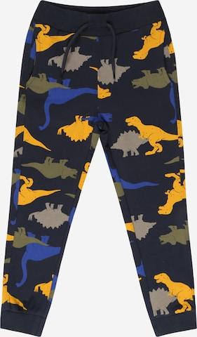Pantalon Guppy en bleu