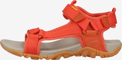 CAMEL ACTIVE Sandales en rouge orangé, Vue avec produit