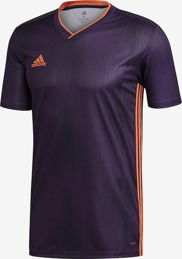 ADIDAS PERFORMANCE Funktionsshirt 'Tiro 19' in dunkellila / orange / schwarz, Produktansicht