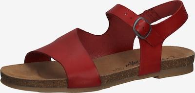 COSMOS COMFORT Sandales à lanières en rouge / rouge foncé, Vue avec produit
