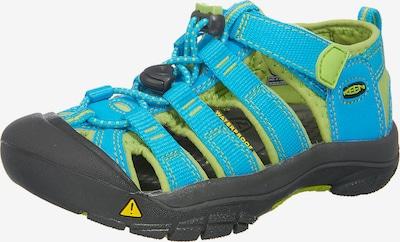 KEEN Kinder Outdoorsandalen in hellblau / hellgrün, Produktansicht