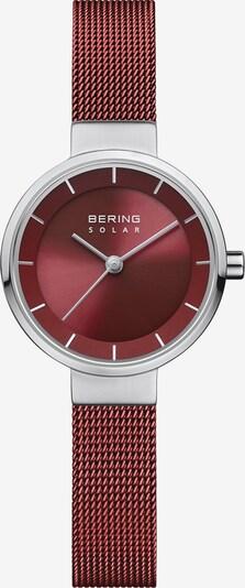 BERING Uhr in bordeaux / silber, Produktansicht