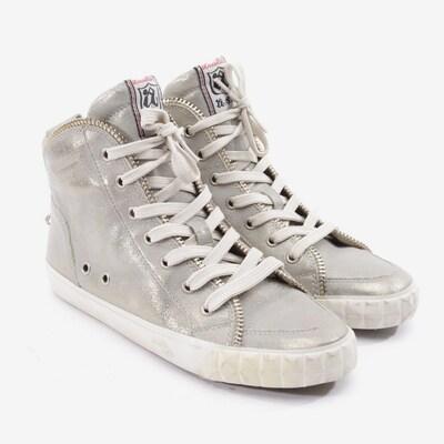 ASH Sneaker in 36 in grau, Produktansicht
