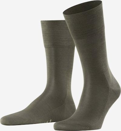 FALKE Socken 'Tiago' in khaki: Frontalansicht