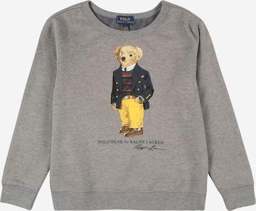 Polo Ralph Lauren Collegepaita värissä harmaa