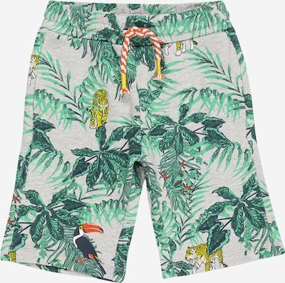 KANZ Pantalon en gris / mélange de couleurs, Vue avec produit