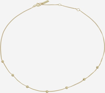 ANIA HAIE Kette in Gold