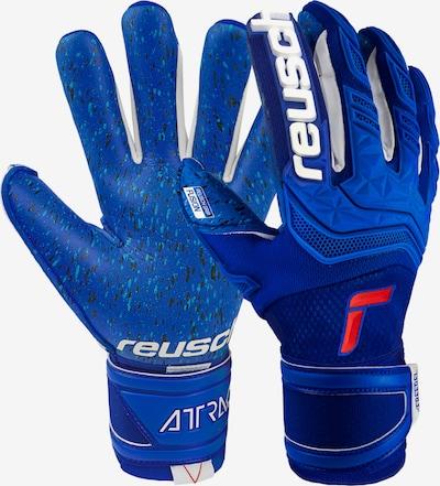 REUSCH Handschuh in blau / rot / weiß, Produktansicht