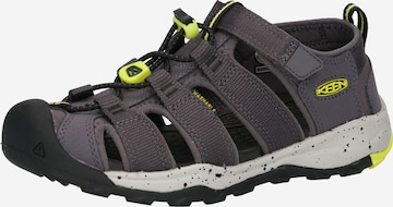 KEEN Sandale 'NEWPORT NEO H2' in Grau