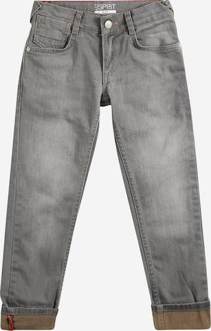 Jean ESPRIT en gris