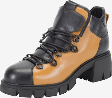 Ekonika Boots in Mixed colors