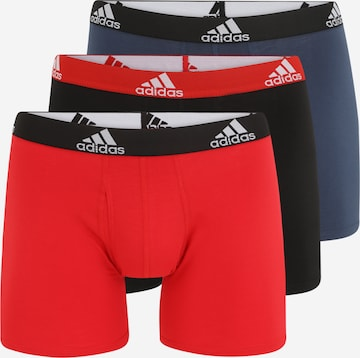 ADIDAS PERFORMANCE Spordialuspüksid, värv segavärvid