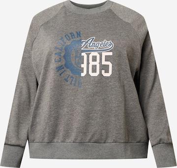Noisy May Curve Sweatshirt 'SUNNY' i grå
