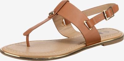 Taxi Shoes T-Steg-Sandalen in cognac, Produktansicht