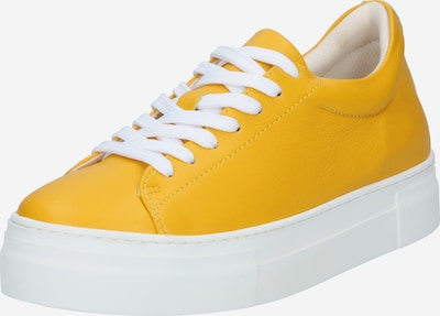SELECTED FEMME Sneakers low 'HAILEY' in saffron: Frontal view