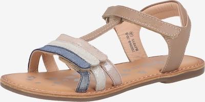 KICKERS Sandale in beige / blau / braun, Produktansicht
