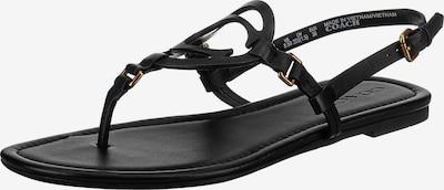 COACH Zehentrenner 'Jeri' in schwarz, Produktansicht