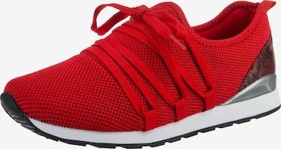 Lynfield Sneaker in grau / rot / bordeaux, Produktansicht