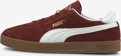 PUMA Sneakers 'Club' in Gold / Dark red / White, Item view